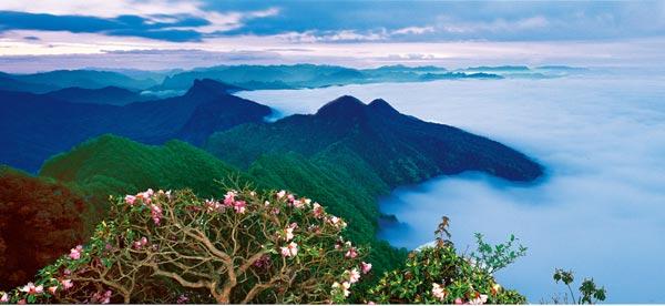 光雾山国家风景名胜区